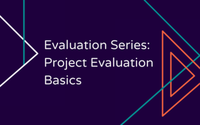 Evaluation Series: Project Evaluation Basics